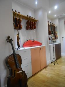 Violini, Viole, Violoncelli e Contrabbassi